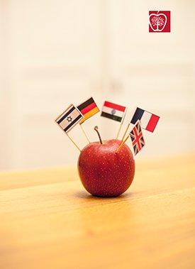 Interkulturelle Kompetenz und Kooperation in Form eines Apfels mit vielen Länderflaggen