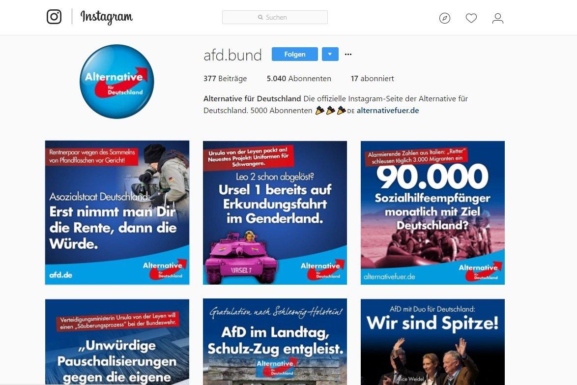 Das Instagramprofil der AfD